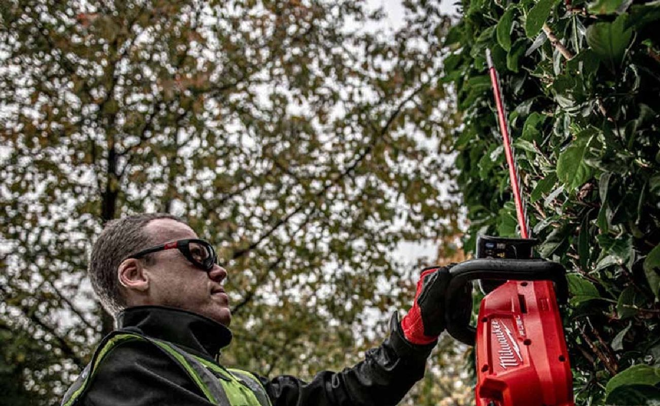 Man With Hedge Trimmer