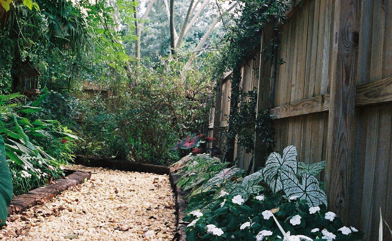 Garden With Garden Path